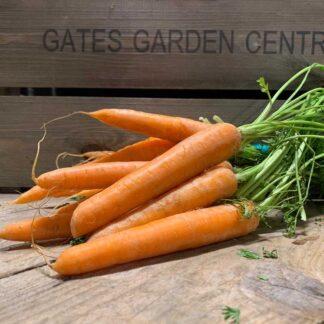 English Bunch Carrots