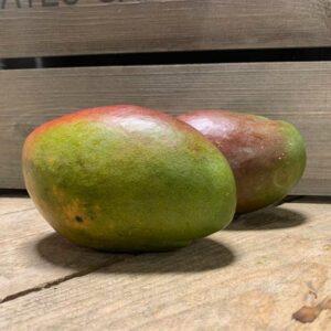 Mango Best