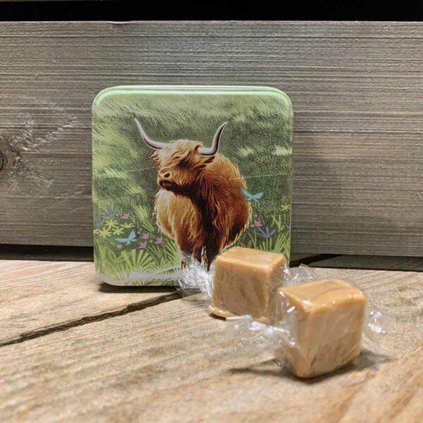 Highland Cow Tin & Clotted Cream Fudge 55g