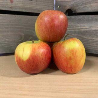 Apple Braeburn (Price each)