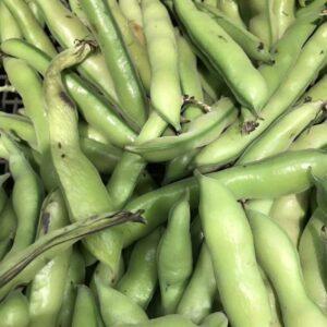broad beans per kg