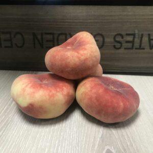 Donut Peaches (Price each)