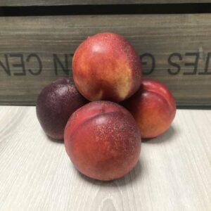Nectarine (Price Each)